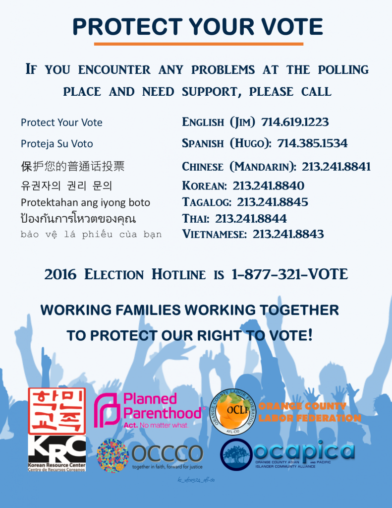 protect-the-vote-flyer